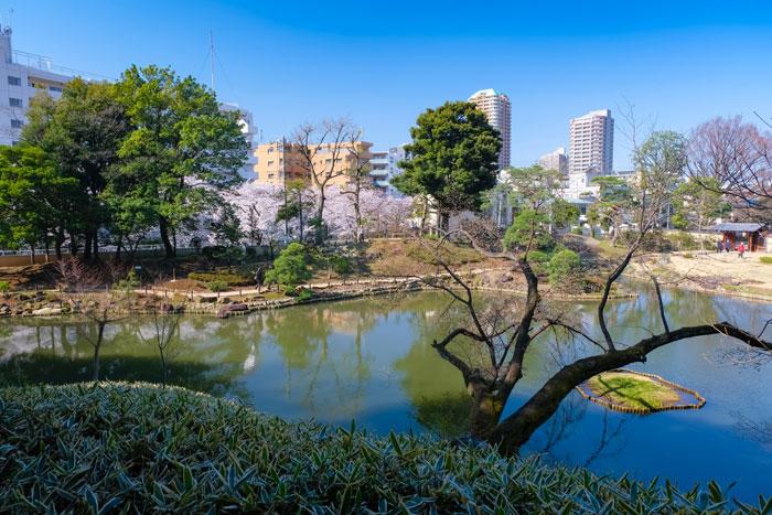 文京区で評判が良いおすすめの葬儀社と家族葬が安い葬儀社を紹介!